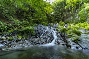 檜原村 夢の滝の写真素材 [FYI04619644]