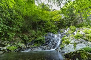 檜原村 夢の滝の写真素材 [FYI04619646]