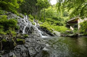 檜原村 夢の滝の写真素材 [FYI04619656]