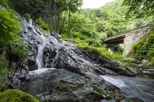 檜原村 夢の滝の写真素材 [FYI04619660]