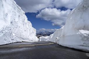 乗鞍エコーライン 雪の回廊の写真素材 [FYI04619675]