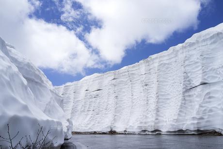 乗鞍エコーライン 雪の回廊の写真素材 [FYI04619680]