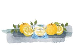柚子とジュースの水彩イラストのイラスト素材 [FYI04619992]