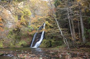 峨瓏大滝の紅葉の写真素材 [FYI04620484]