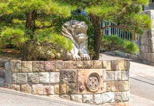 神戸市 塩屋ジェームス山 外国人住宅地のライオン像の写真素材 [FYI04620824]