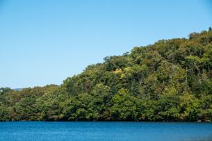 青い静かな湖と原生林 屈斜路湖の写真素材 [FYI04621007]