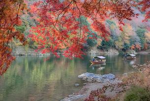 京都嵐山の紅葉と屋形船の写真素材 [FYI04621037]