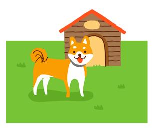 犬小屋と柴犬のイラスト素材 [FYI04621337]