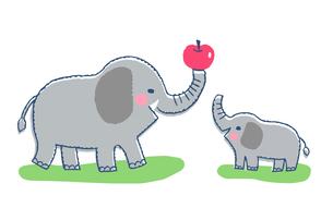 象の親子のイラスト素材 [FYI04621347]