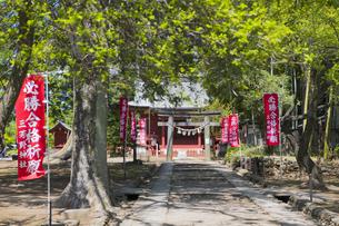 三芳野神社の写真素材 [FYI04621463]