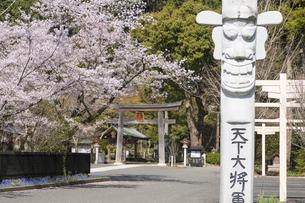 春の高麗神社の写真素材 [FYI04621497]
