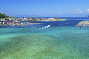 柏島の海 夏の高知県の写真素材 [FYI04621510]