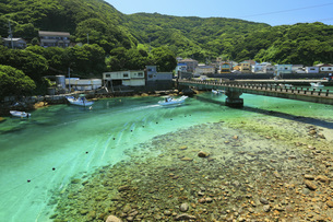柏島の海 夏の高知県の写真素材 [FYI04621512]