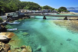 柏島の海 夏の高知県の写真素材 [FYI04621514]