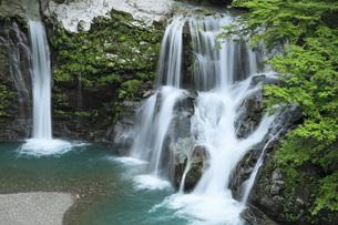 夏の大轟の滝 徳島県の写真素材 [FYI04621517]