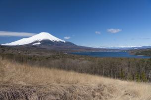 パノラマ台から雪の富士山の写真素材 [FYI04621522]
