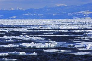 2月 オホーツク海の流氷 -北海道の冬-の写真素材 [FYI04621585]
