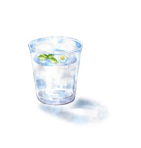 コップの水に浮かぶハーブのイラスト素材 [FYI04621726]