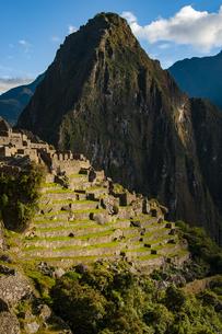 マチュピチュ遺跡の段々畑とワイナピチュ峰の朝日の写真素材 [FYI04622330]