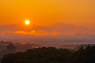 朝日に染まる美瑛の風景の写真素材 [FYI04622431]