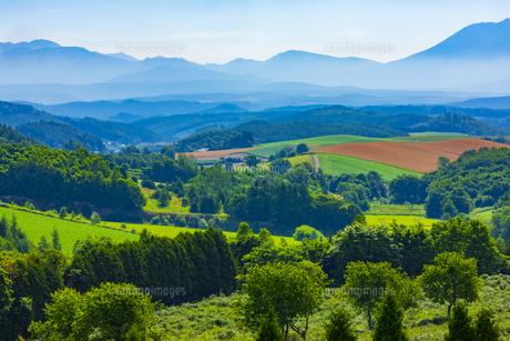 深山峠から見る美瑛の風景の写真素材 [FYI04622460]