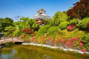 ツツジ咲く上山城の写真素材 [FYI04622605]