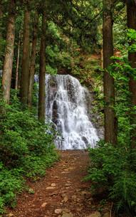 母の白滝の写真素材 [FYI04622956]