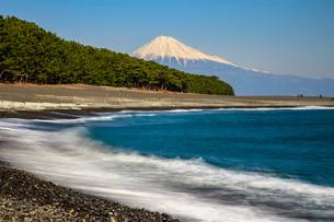 三保の松原からの富士の写真素材 [FYI04622980]
