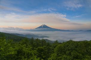 富士山と雲海の写真素材 [FYI04623020]