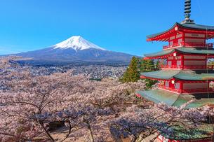 富士山と桜と五重塔の写真素材 [FYI04623029]