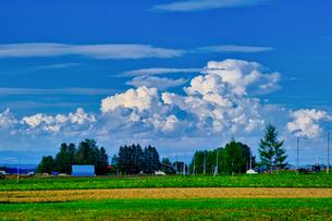 夏の空の写真素材 [FYI04623131]