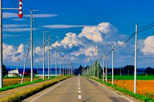 夏の道路の写真素材 [FYI04623133]