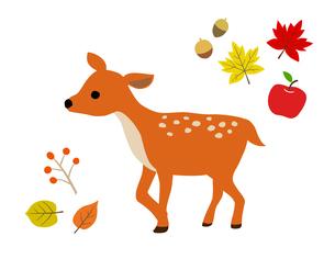 子鹿と秋の紅葉 イラストセットのイラスト素材 [FYI04623472]
