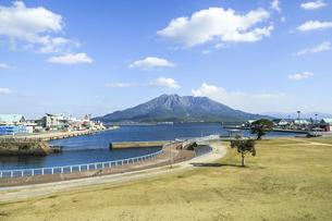 ウォーターフロントパークから見る桜島の写真素材 [FYI04623514]