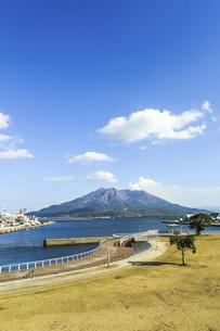 ウォーターフロントパークから見る桜島の写真素材 [FYI04623515]