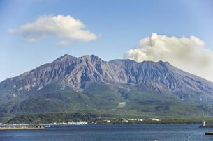 桜島の写真素材 [FYI04623517]