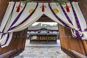 下鴨神社 中門より本殿に向かっての写真素材 [FYI04623701]
