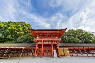 下鴨神社 楼門と剣の間の写真素材 [FYI04623706]