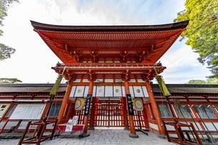 下鴨神社 楼門 煎茶献茶祭の札の写真素材 [FYI04623712]