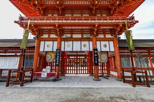 下鴨神社 楼門 煎茶献茶祭の札の写真素材 [FYI04623714]