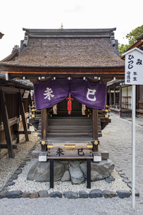 下鴨神社 本殿前に並ぶ言社の写真素材 [FYI04623718]