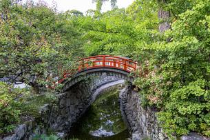 下鴨神社 新緑に映える輪橋の写真素材 [FYI04623719]