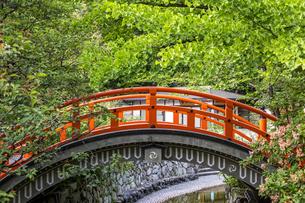 下鴨神社 新緑に映える輪橋の写真素材 [FYI04623720]