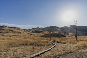 砥峰高原の冬の写真素材 [FYI04623795]