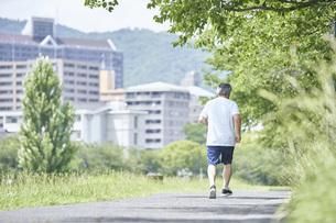 緑の中で運動をするシニアの男性の写真素材 [FYI04623946]