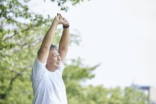 屋外でストレッチをするシニアの男性の写真素材 [FYI04623950]