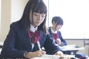 勉強する女子高生の写真素材 [FYI04624262]