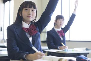 勉強する女子高生の写真素材 [FYI04624269]