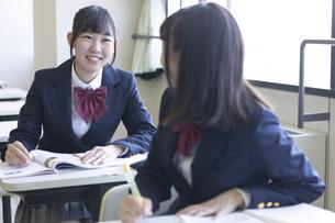 勉強する女子高生の写真素材 [FYI04624291]