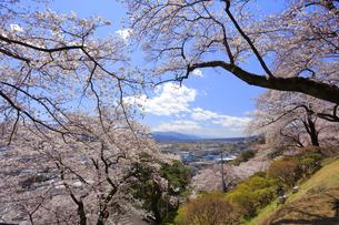 春日公園の写真素材 [FYI04624672]